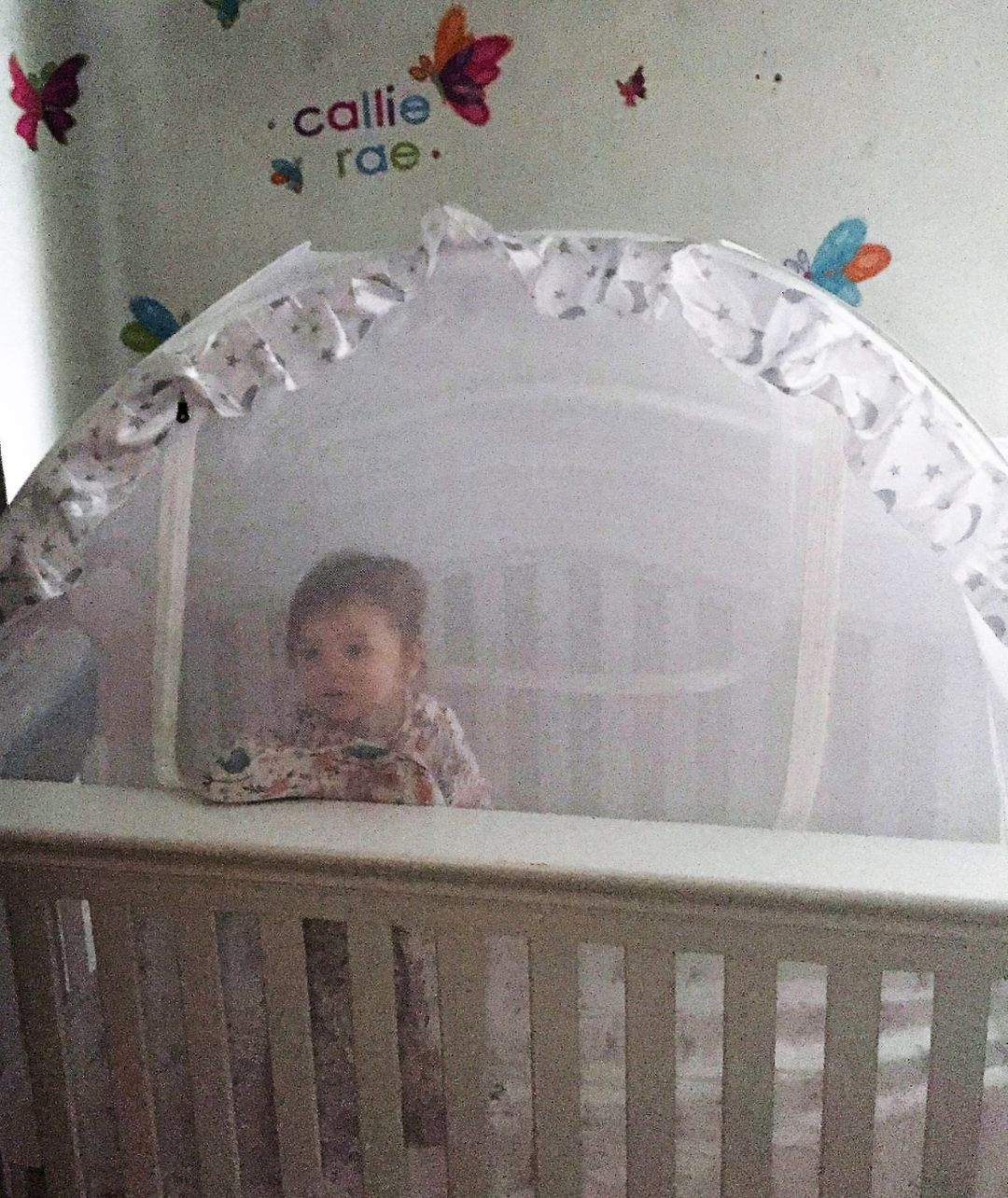 Crib Tent How To Keep The Baby In The Crib Baby Cribs Safe Cribs