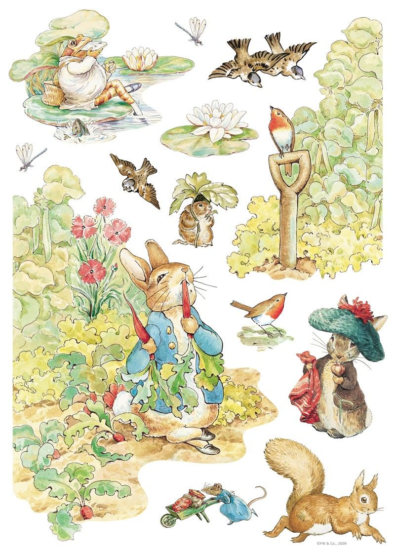 Beatrix Potter Wall Decals - RosenberryRooms.com | Doodles ...