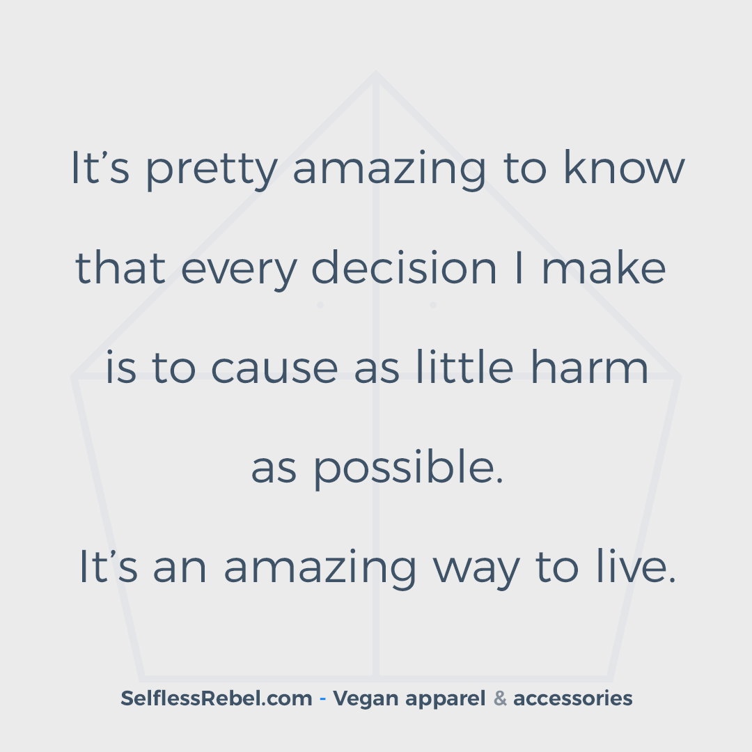 Conscious Quotes Vegan Quote 29 Conscious Cruelty Free Clothing That Helps
