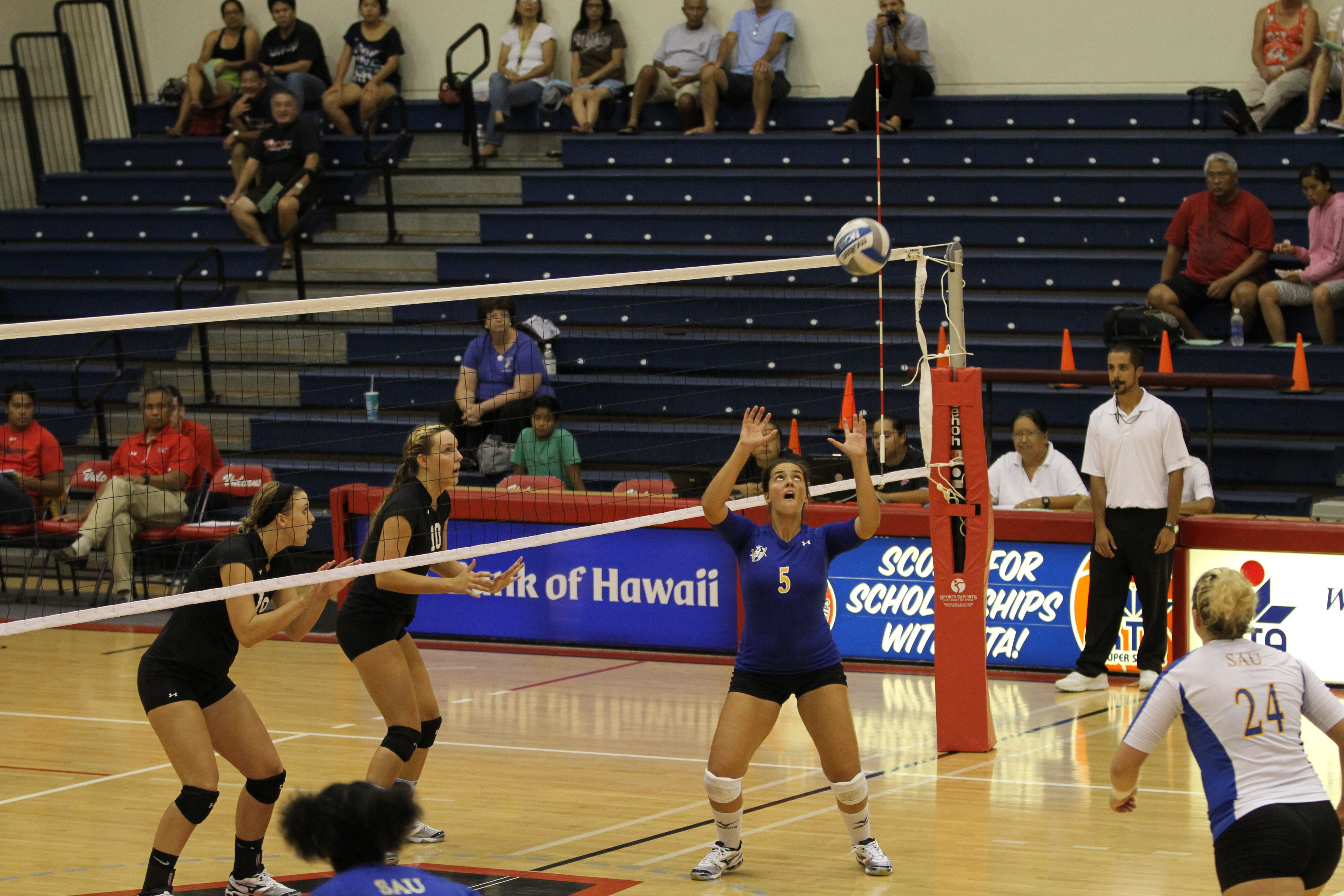 Klaire Blasco Vine Ready To Set The Offense For Another Kill Against Hawaii Hilo Volleyball Pictures Hawaii Volleyball