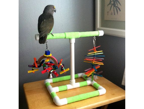 Good Great For Small And Medium Sized Birds U Large Conures Senegals Atiels With Pvc Plax