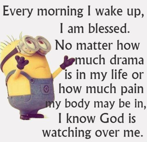 ecc80773b70dc2339165f485bfcb83eb funny minions quotes of the week funny minion, funny humor and