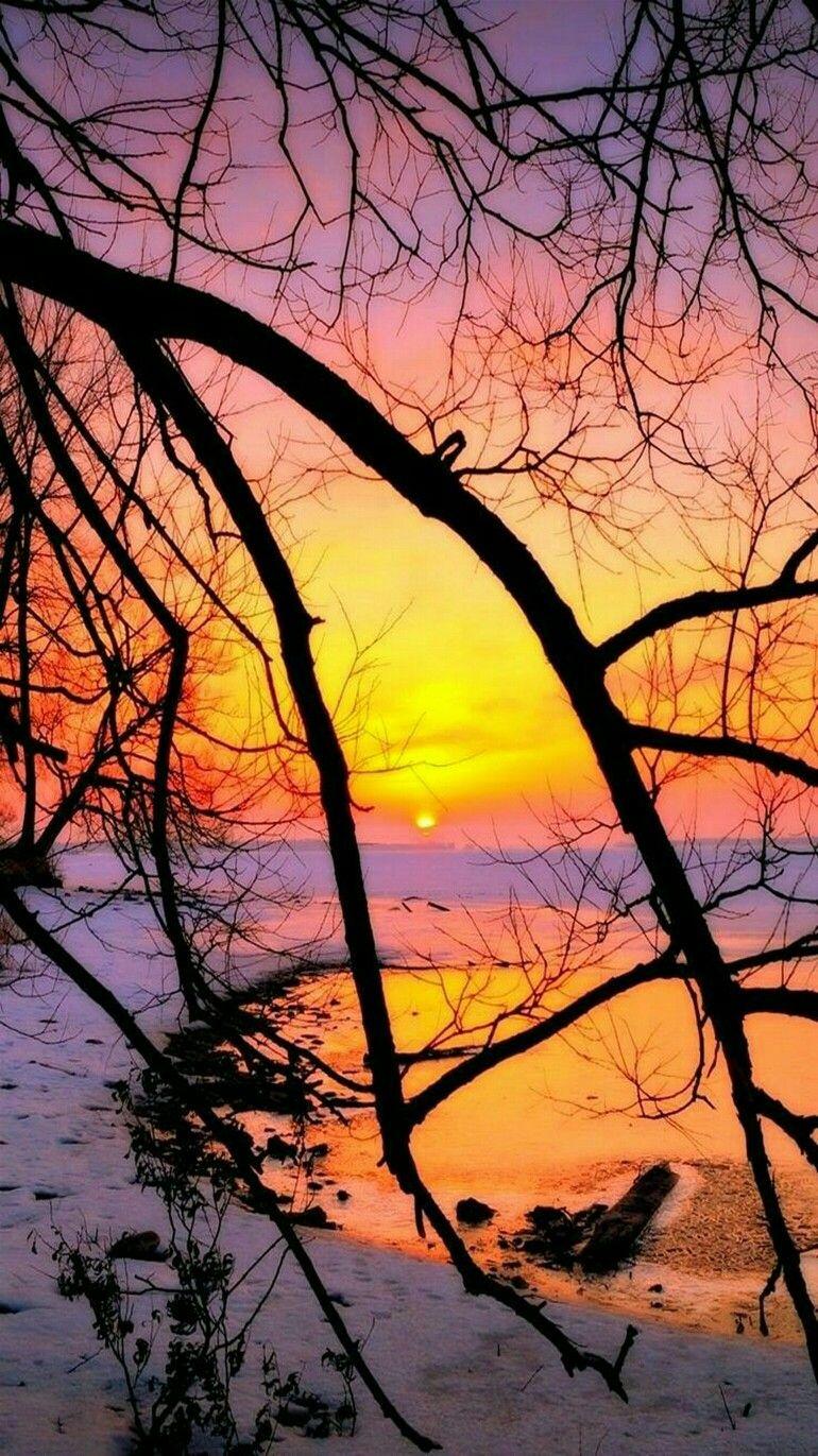 Nature - Winter Sunset #fotografia