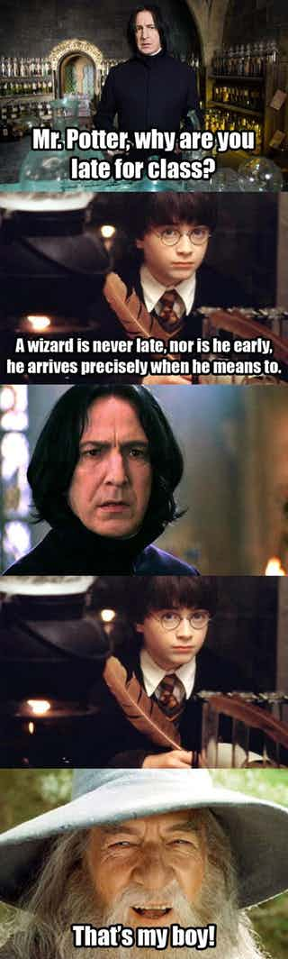 15 Harry Potter Lord Of The Rings Crossover Memes That Made Us Laugh A Little Too Hard Harry Potter Quotes Funny Harry Potter Funny Harry Potter Memes
