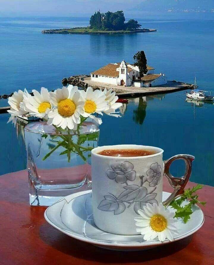 Pin By Leyla Ozcelik On فنجان قهوتي Good Morning Coffee Spring Coffee Morning Coffee