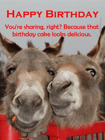 Smiles For Piece Of Cake Funny Birthday Card Birthday Greeting Cards By Davia Birthday Humor Funny Birthday Cards Birthday Cards