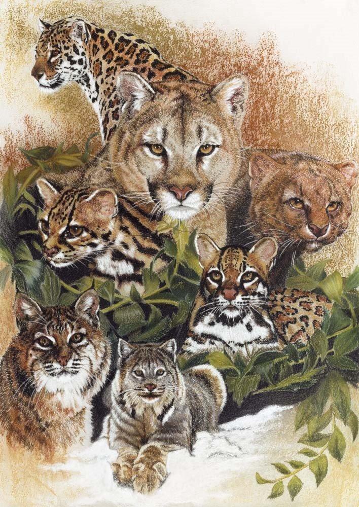 Big Cats Wall Art Wild Cat Family Big Cat Wall Art Wild Cats Big Cats Art