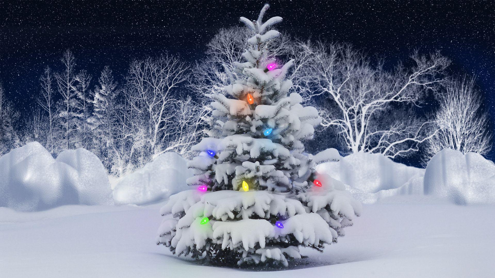 christmas tree wallpapers - Google претрага