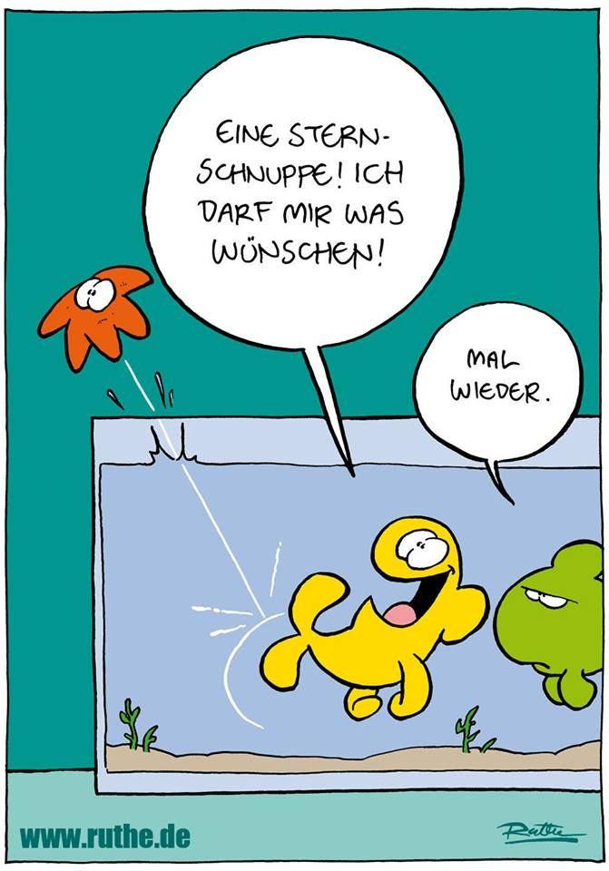 Ralph Ruthe | FUN - Ruthe.de | Funny cartoons, Funny und ...