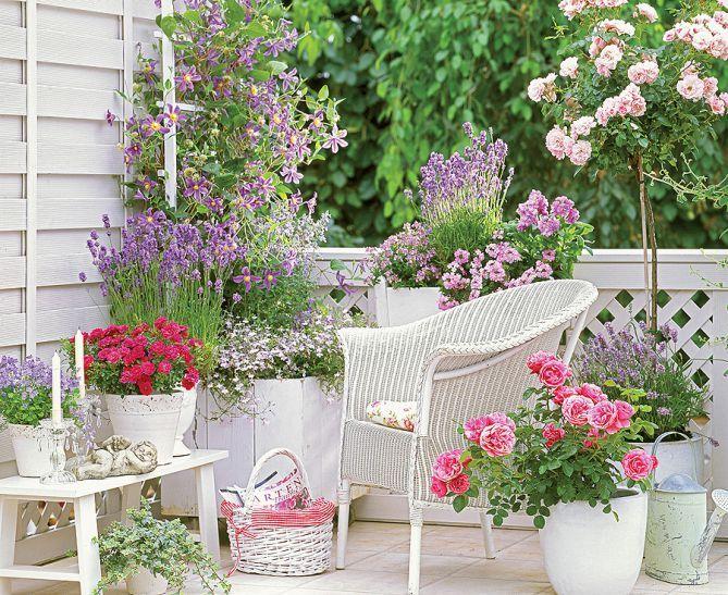 Balkon Z Pomyslem Kolorowe Kwiaty Pieknie I Letnio Beda Wygladaly W Bialych Wiklinowych Oslonkach Dekorac Small Balcony Garden Balcony Flowers Growing Roses