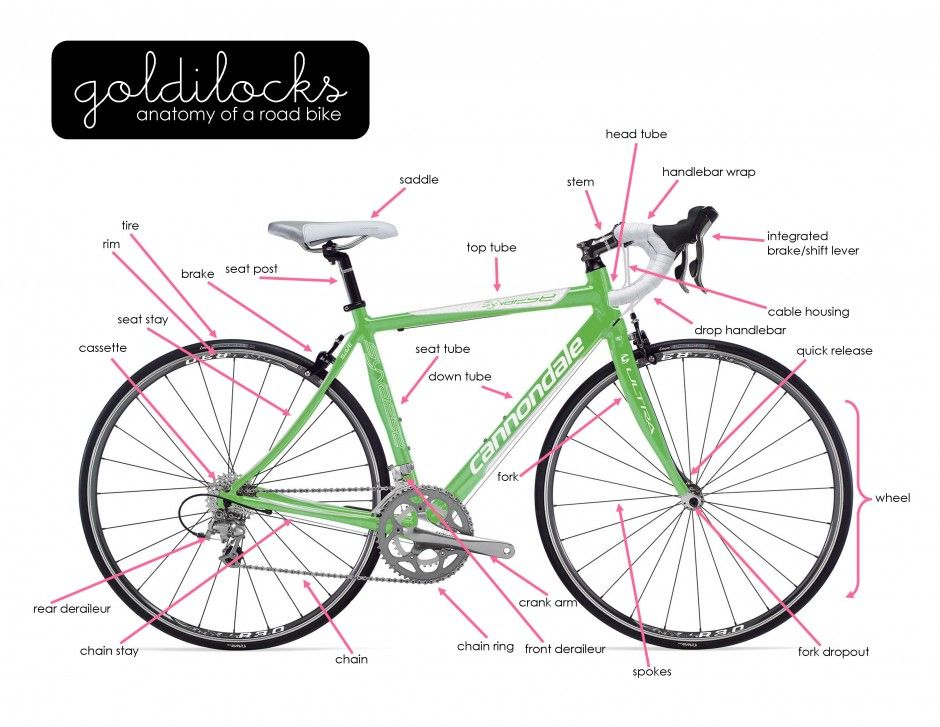Anatomy Of A Road Bike Strong And Sexy Pinterest Cycling