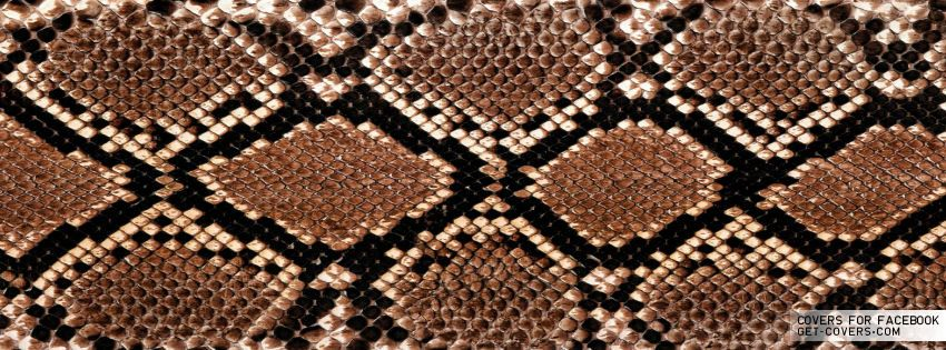 Get this Snake Skin Facebook Covers for your profile from Get-Covers.com.