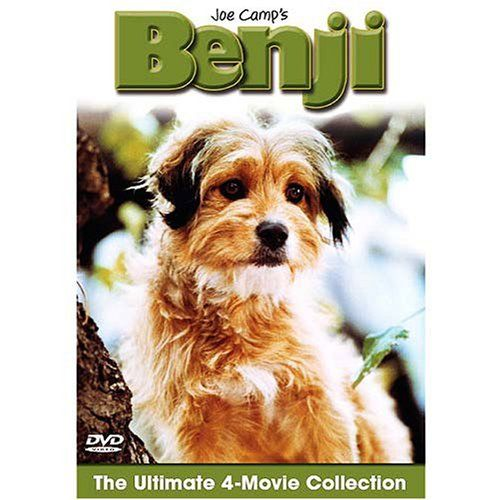 Good Joe Camp S Benji Ultimate 4 Movie Collection 2 Dvd Set Movie Collection Movies Dog Movies