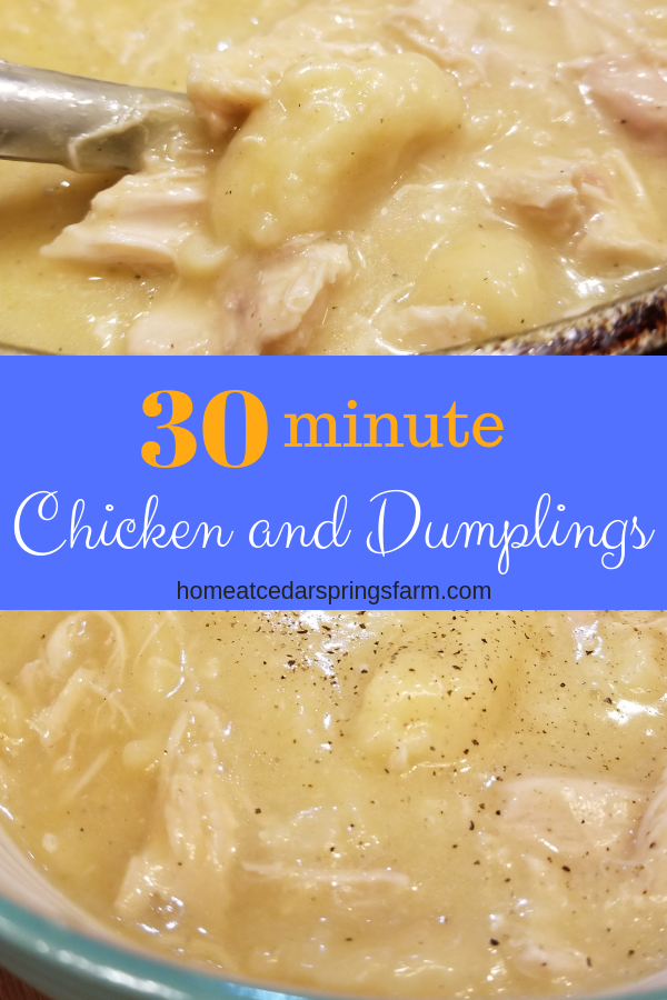 Easy Chicken And Dumplings Home At Cedar Springs Farm Recipe Easy Chicken Dumpling Recipes Quick Chicken And Dumplings Homemade Chicken And Dumplings