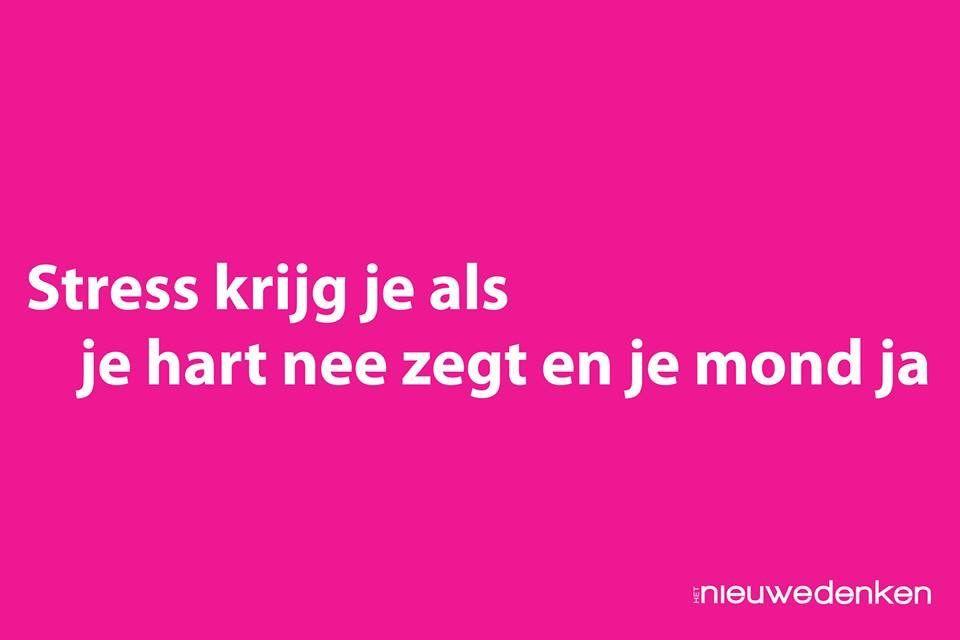 Ingesloten Afbeelding Niederlandische Zitate Inspirierende Spruche Lebensspruche