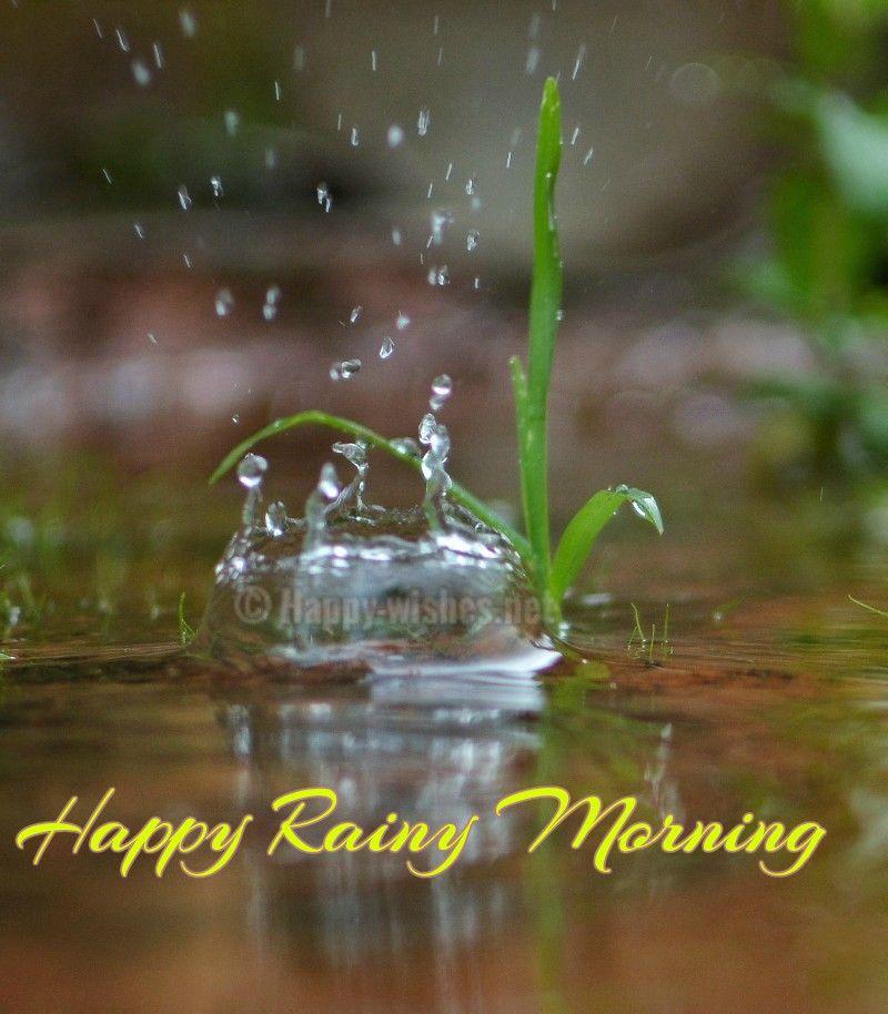 Happy Rainy Day Quotes: Good Morning Rainy Day