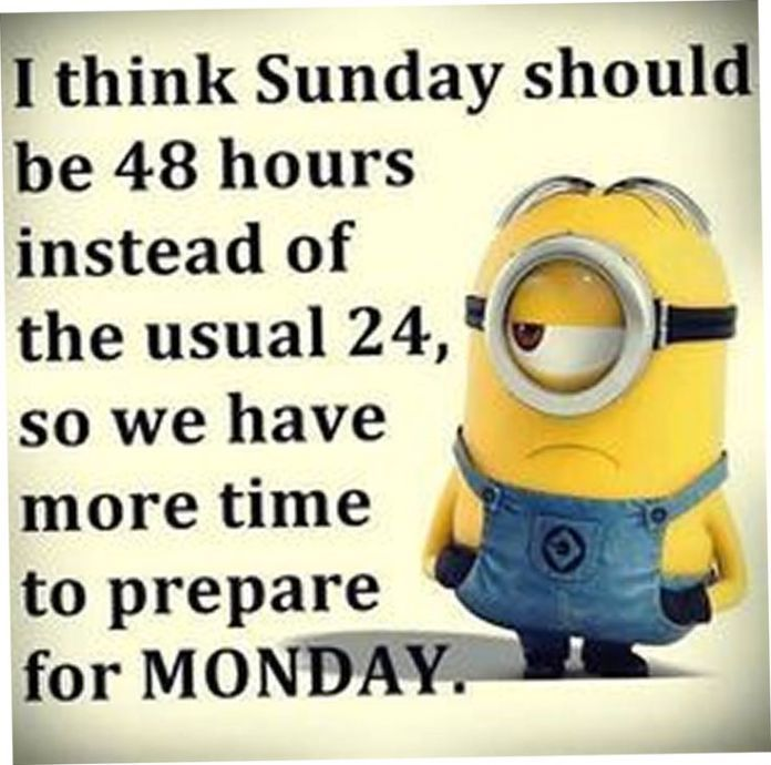21 Great Funny Minion Quotes