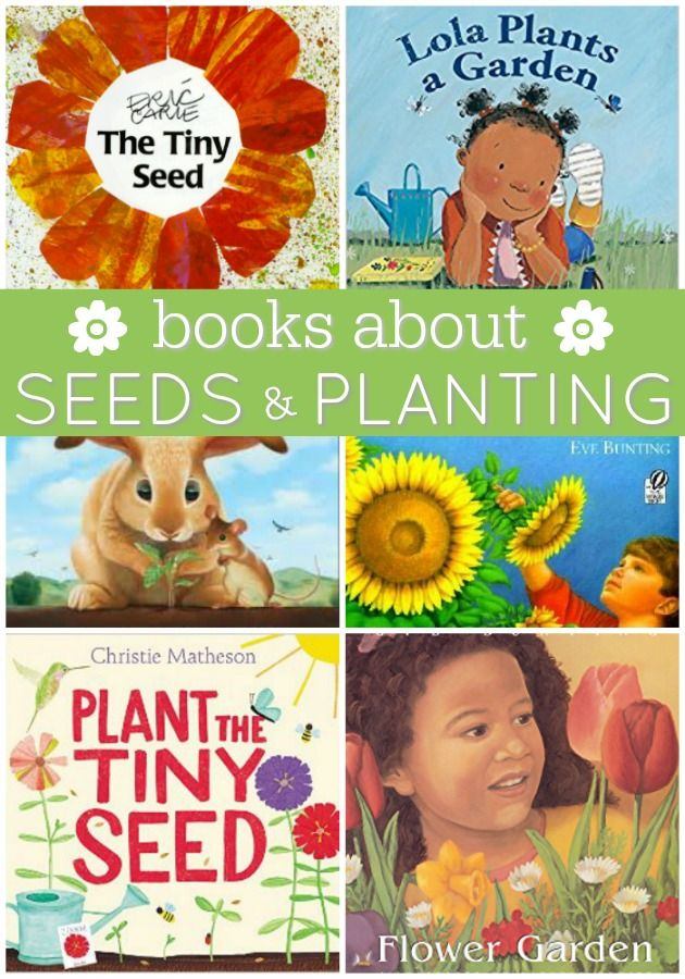 Books About Seeds and Plant Life Cycles - Pre-K Pages
