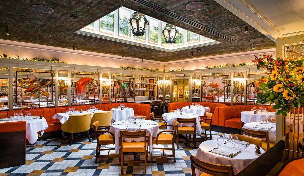 Deliciously Luxury On A Budget At The New North London Ivy Incarnation Ivy Cafe Urban Hotels Top Restaurants In London