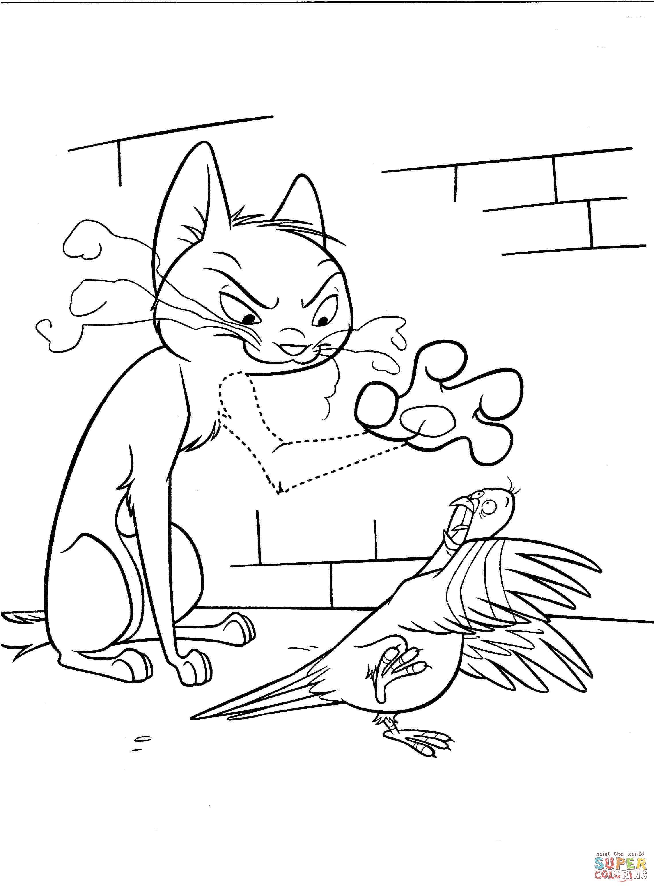 Angry Cat With Dove Coloring Page Supercoloring Com Bird Coloring Pages Disney Coloring Pages Coloring Pages