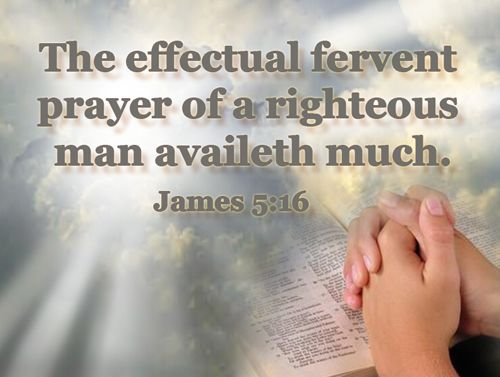 Pastoral Exhortation-Gethsemane Bible-Presbyterian Church | The effectual fervent prayer, Prayer quotes, Daily devotional