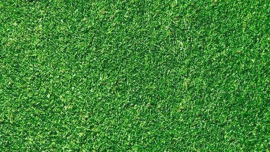 Grass 3d Model Textura Cesped Hierbas Textura Garden grass background for photoshop
