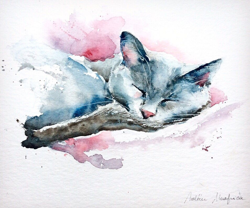 Watercolor Original Painting Cat Sleeping Sleep Hair Color