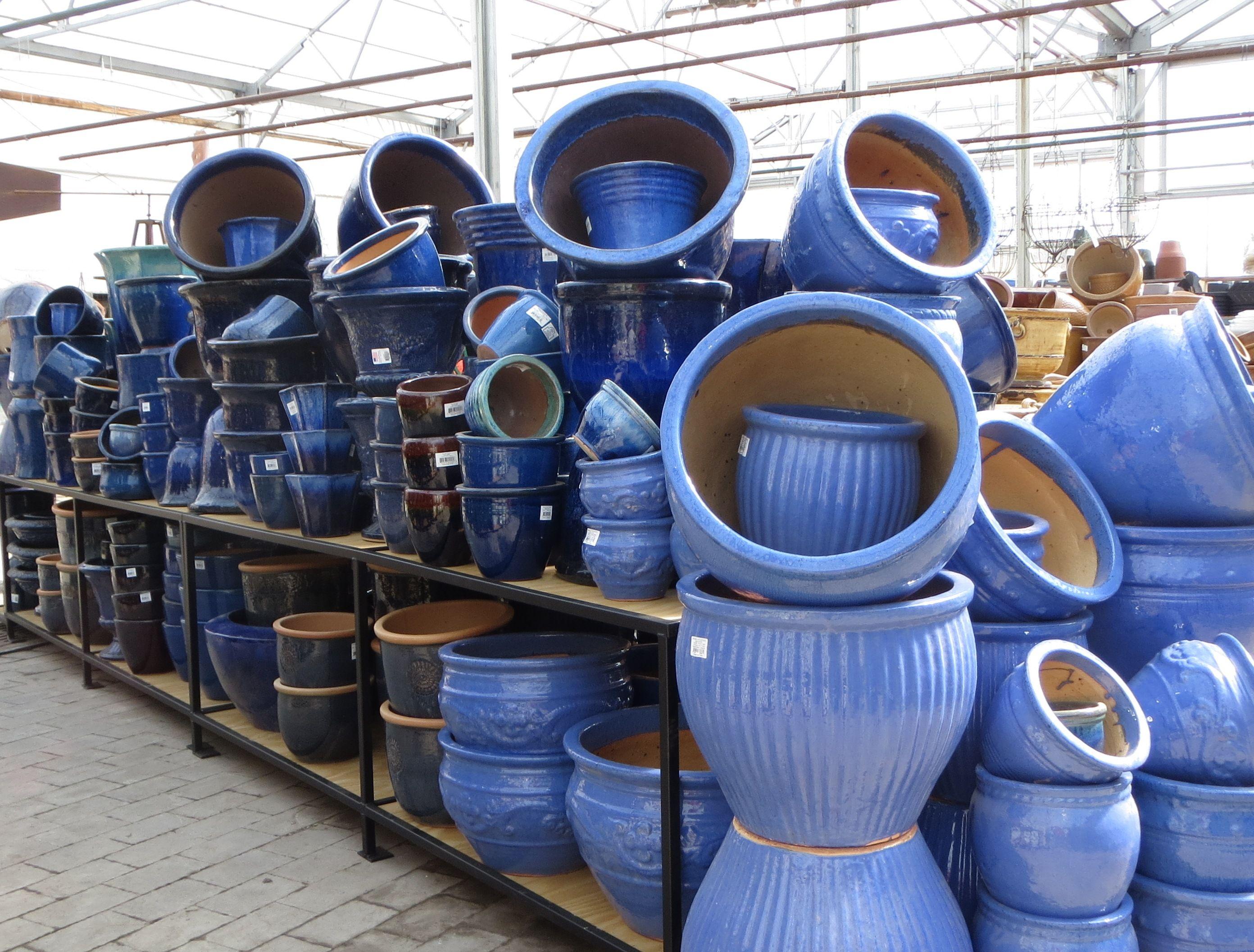 Do you like the hue of blue? So do we! Bristol's Garden