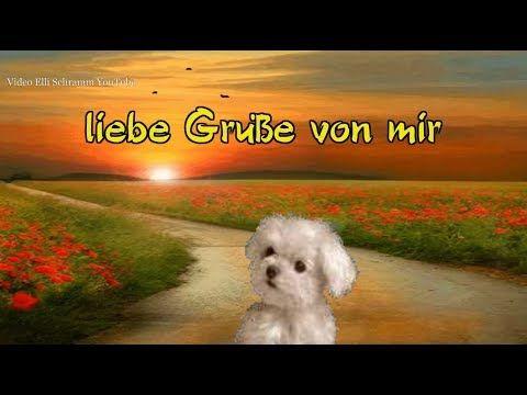 Youtube Liebe Guten Morgen Grüße Lustige Guten Morgen