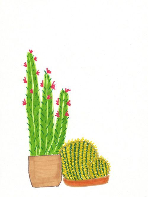 Lucy Auge - Cactus