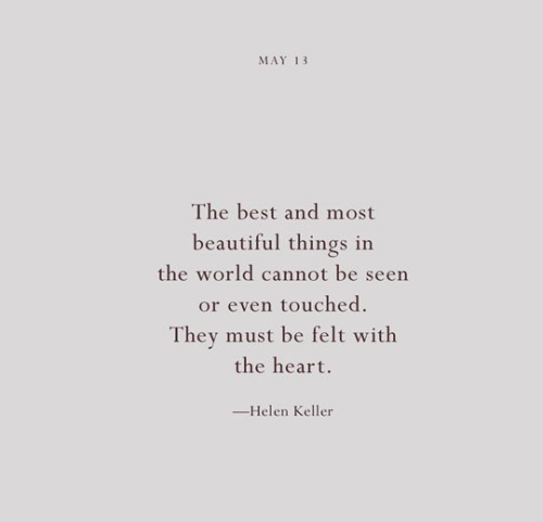 Quotes 365 Days Awesome 365 Days Of Wonder  Google Search  Words  Pinterest