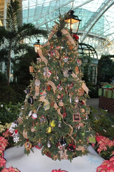Zac Brown Band Christmas Tree Decorations Christmas Trees For Kids Christmas Tree