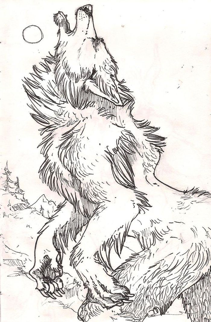 Scary Werewolf Coloring Pages in 2020 | Coloring pages ...