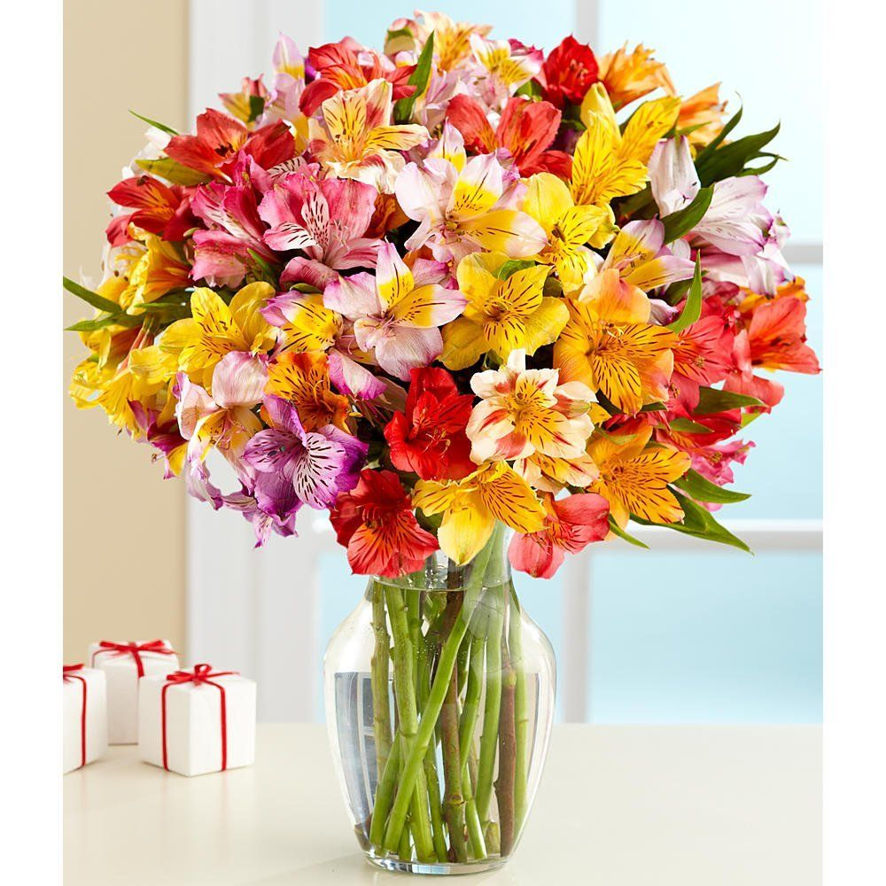 100 blooms of get well wishes with free glass vase flowers price 100 blooms of get well wishes with free glass vase flowers price 2999 izmirmasajfo