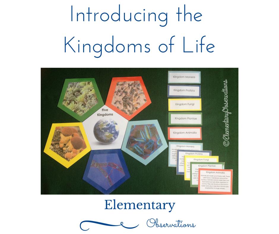 Printable Worksheets five kingdoms of living things worksheets : Elementary Observations: Five Kingdoms | Animals | Pinterest ...