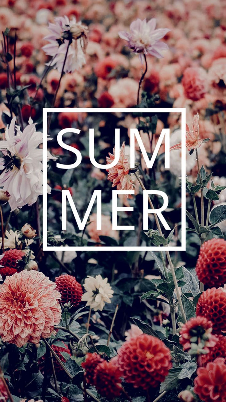 8 Floral iPhone Wallpapers To Enjoy That Summer Feeling | Preppy Wallpapers