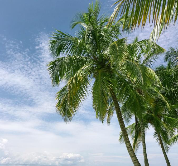 Menakjubkan 30 Contoh Gambar Pemandangan Laut Indah Di 2020 Pemandangan Gambar Fotografi Pantai