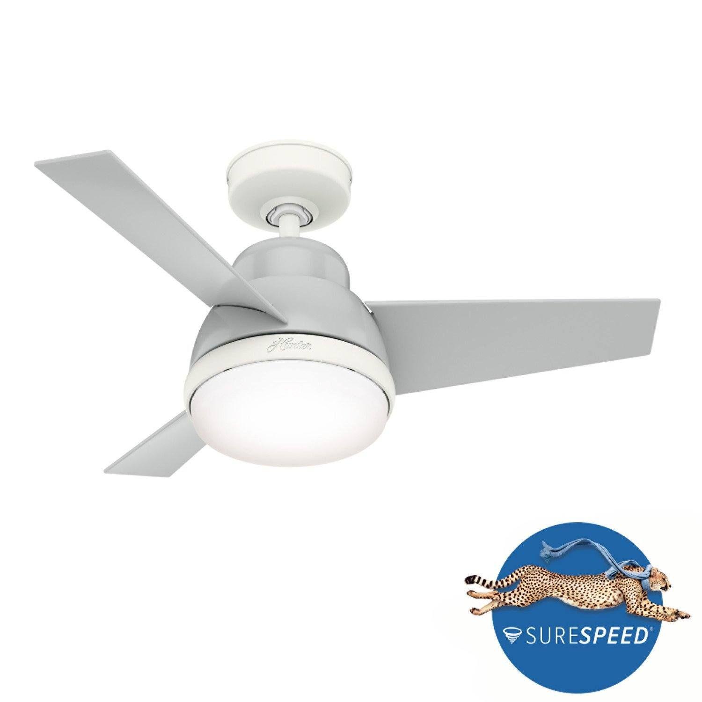 Hunter Tarrant 36 In Led Indoor Brushed Nickel Ceiling Fan 59304 The Home Depot Brushed Nickel Ceiling Fan Ceiling Fan Ceiling Fan With Light