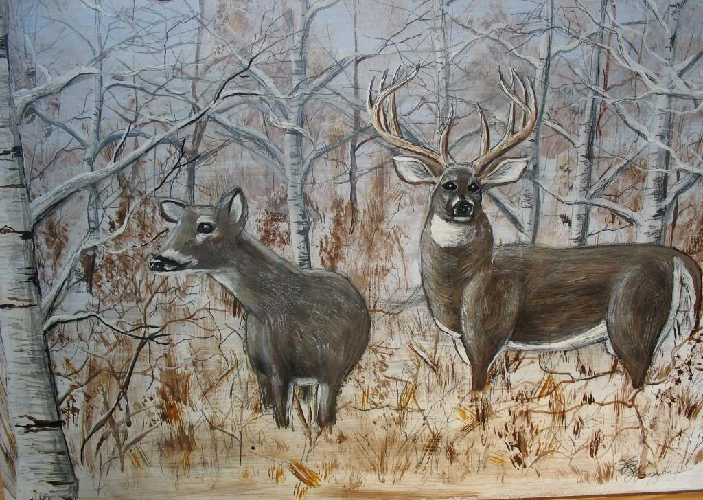 Whitetail deer backgrounds hd wallpapers pinterest hd whitetail deer backgrounds deerhd wallpaper voltagebd Image collections
