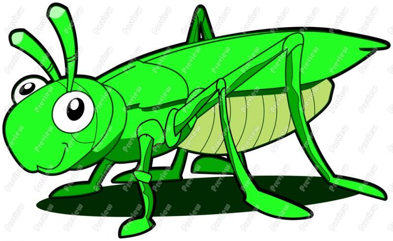 free clip art grasshoppers grasshopper clipart item 3 gypsy1 rh pinterest com grasshopper clipart free grasshopper clip art free