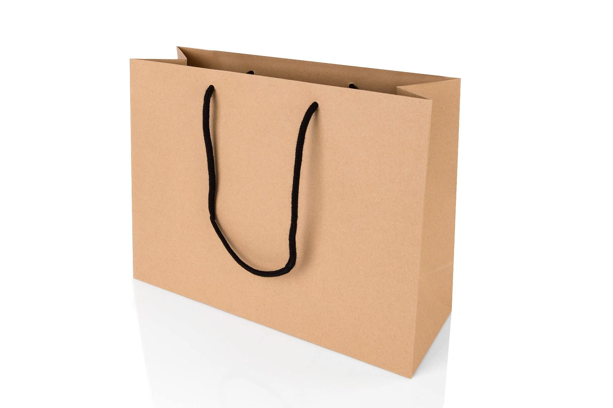 Large Landscape Kraft Paper Gift Bag With Rope Handles 250 X