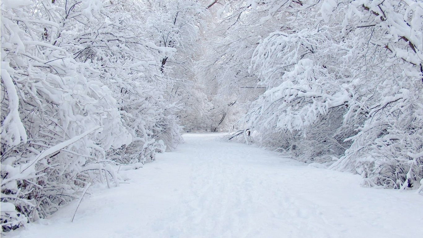 snow Snow road wallpapers snow Winter background Winter