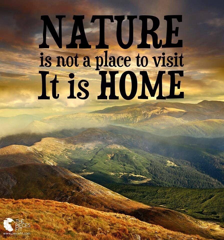Www Piecefit Com Forest Freak Nature Nature Quotes Nature Travel