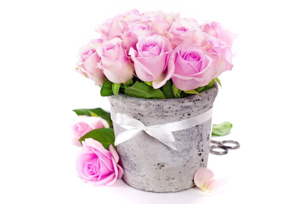 Pink Roses In Vase Gift Wallpaper Pink Flowers Wallpaper Pink Roses Flowers Bouquet