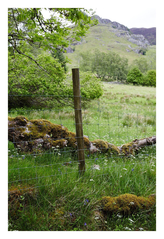 6f5ea2996768648e-Scotland_0579.jpg