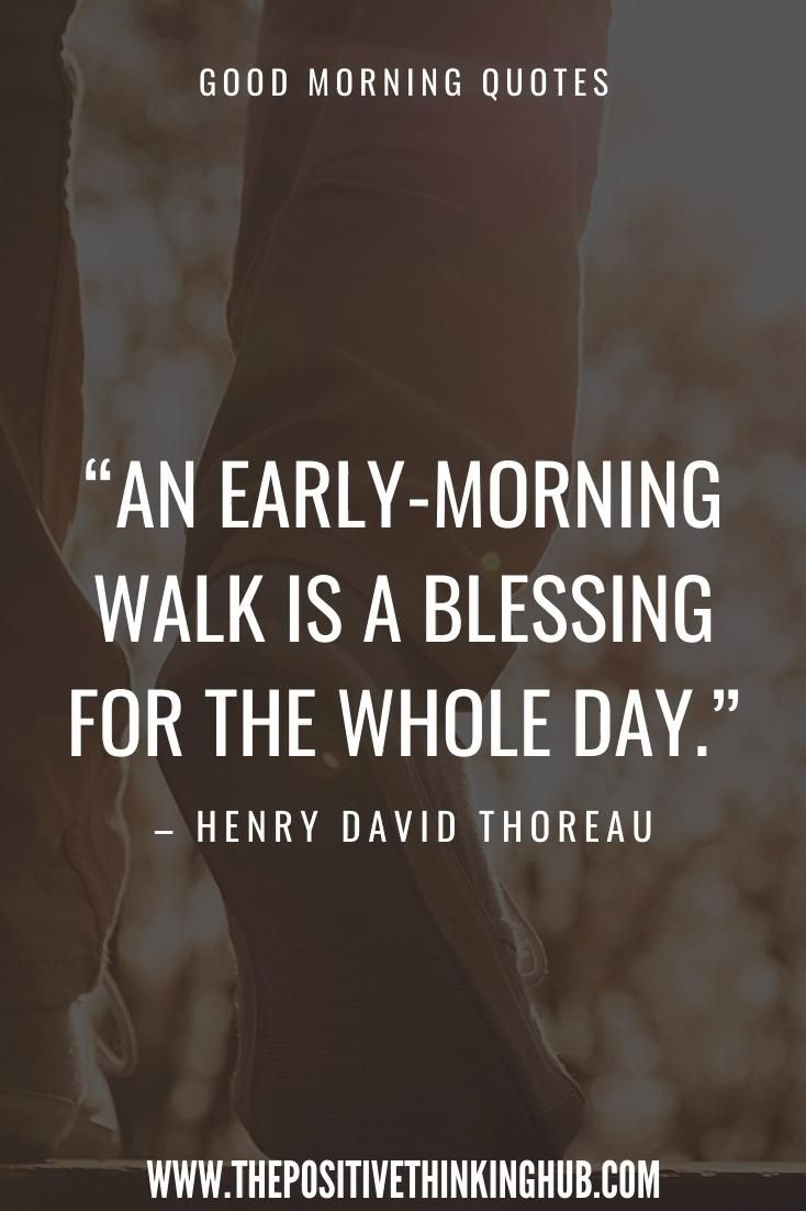 We all need powerful morning quotes to set ourselves up for a positive day. Many of us struggle to get out of our bed in the morning, which is what makes morning quotes effective. A simple shift in mood can do wonders for all of us. When you wake up, make sure to read your favourite morning quotes that give you motivation for the day. #goodmorningquotes #morningquotes #positivemorningquotes