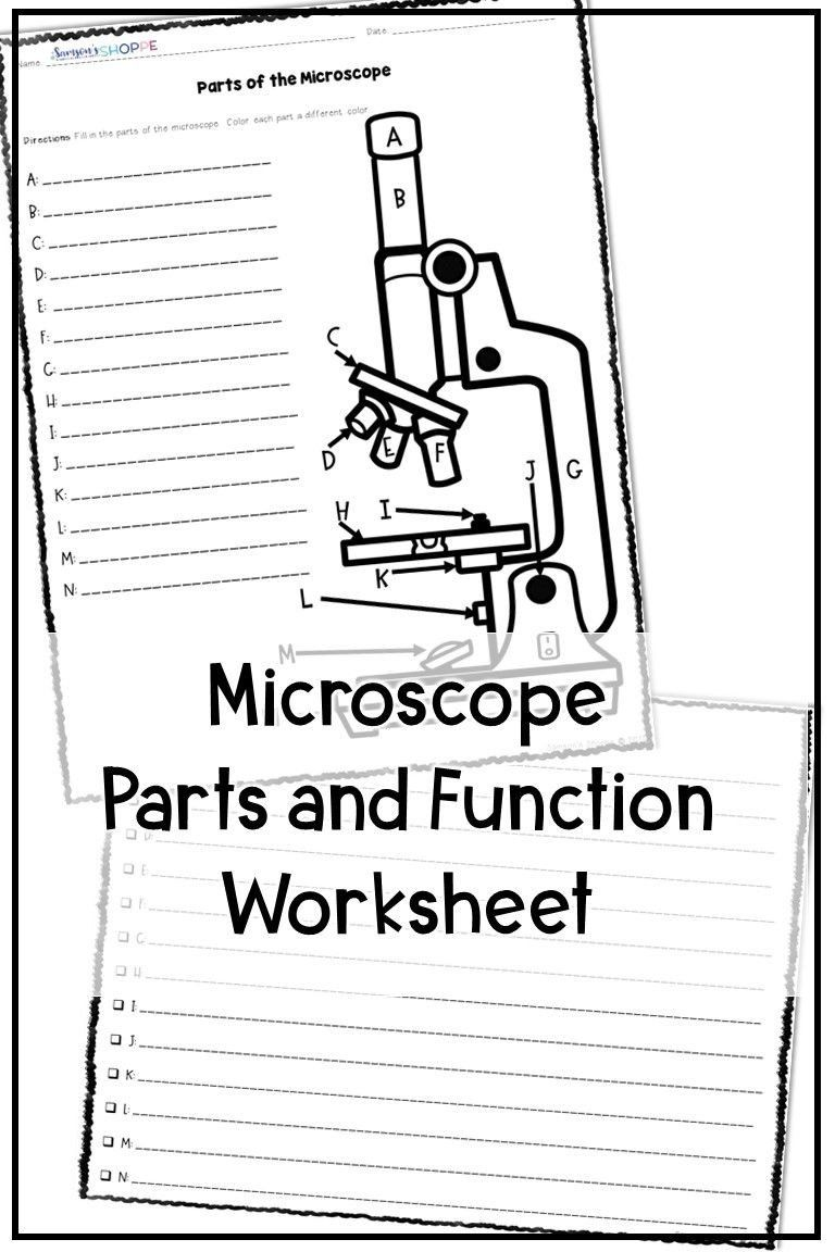 Parts Of A Microscope Worksheet Microscope Parts And Function Activities In 2020 Microscope Lesson Worksheets For Kids Microscope Activity