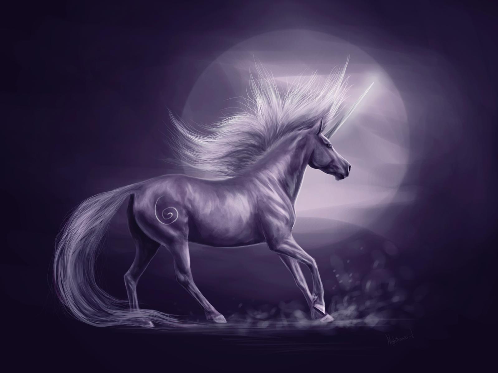 Scratch Forums / The five animals Anime Unicorn Magic
