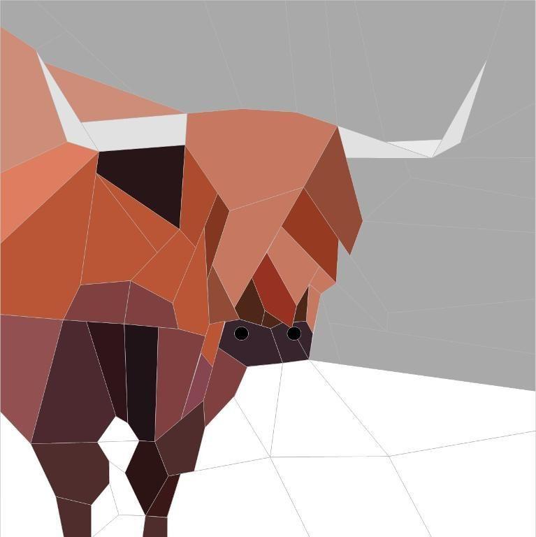 Highland Cow 12.5