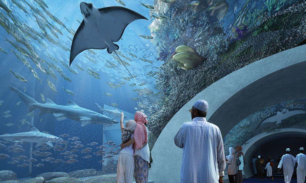 Design Aquarium Kast : Acrylic tunnel design for the oman aquarium aat acrylics